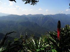 Parque Estadual Pico do Marumbi, Morretes Paraná. #montanhismo #climb #caminhada #trilhas #morretes #parana