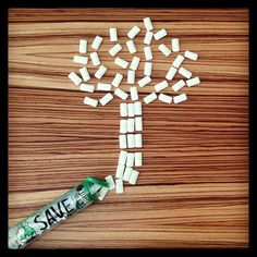 Every time you buy Project 7 Save the Earth gum, you help us plant a tree. 2,709,246 trees planted so far. Thank you.