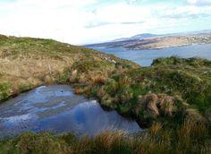 The view from the Sky Road is an unforgettable experience. 3 times I have been there and I'm still amazed! #SkyRoad #Connemara #Clifden #View #Ireland #WildAtlanticWay #Ocean #Sea #Atlantic #Road #Travel #Voyage #Irlande #Irlanda  #DiscoverIreland #LoveIreland #WanderIreland #ig_Ireland #igersIreland #loves_ireland #instaIreland #bestirelandpics #youririshadventure #icu_ireland #irelandcalling #ireland_gram