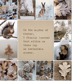 by AT ... ❃∘❃✤ॐ ♥..⭐.. ▾ ๑♡ஜ ℓv ஜ ᘡlvᘡ༺✿ ☾♡ ♥ ♫ La-la-la Bonne vie ♪ ❥•*`*•❥ ♥❀ ♢❃∘❃♦ ♡ ❊ ** Have a Nice Day! ** ❊ ღ‿ ❀♥❃∘❃ ~ Fr 11th Dec 2015 ... ~ ❤♡༻ ☆༺❀ .•` ✿⊱ ♡༻
