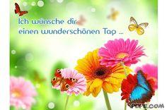 http://scouteu.s3.amazonaws.com/cards/images_vt/merged/ich_wuensche_dir_einen_wunderschoenen_tag_40.jpg
