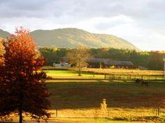 old farmhouse view, looking toward Mount Holyoke ~ outside Hadley, Massachusetts