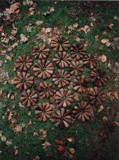 Some good examples to be inspired by for Andy Goldsworthy unit