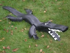 Douglas the Tire-Alligator is my 7th gator