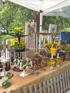 ChiPPy! - SHaBBy!: Back From NORTHWIND PERENNIAL FARM Antique & Garden Show - Wisconsin...