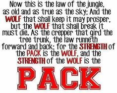 The strength of the Wolf is the PACK!