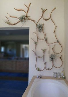 Bring the garden indoors - wall fixture that mimicks the natural growth of weeds and trees with spaces for succulents