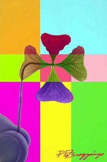 Prezlečený anjel: poézia, próza, reportáže, recepty: Poézia: Can We Hold Onto Happiness?