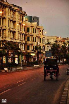 Alex / Egypt