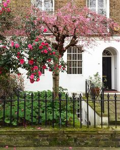 Edwardes Square: Some corners of London are too pretty for words. . . .