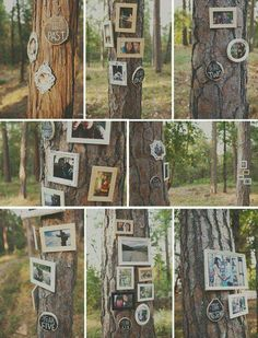 Cute way to display memories for your outdoor forest wedding!, maybe use ribbon to place photos on the tree so as not to nail,in the tree