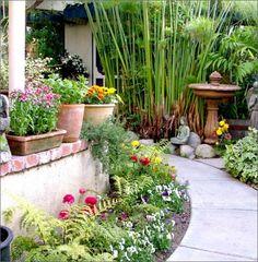 Money saving garden ideas