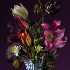 basmeeuwsusa@gmail.com Bas Meeuws - contemporary Dutch flower still life photography