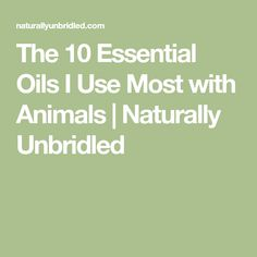 The 10 Essential Oils I Use Most with Animals | Naturally Unbridled