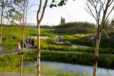 Qunli Stormwater Wetland Park Stores Rainwater While Protecting the Environment from Urban Development | Inhabitat - Sustainable Design Innovation, Eco Architecture, Green Building