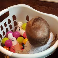 DIY ball pit  #tuesday #parentinghack #parentingtheshitoutoflife #rainbowbaby #mumlife #maternityleave #ballpit