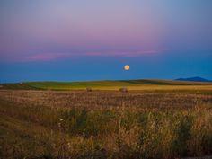 my pink moon  Oppido Lucano (Potenza)