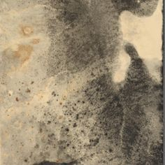 Inspiration: Alison Rossiter, (detail from) Eastman Kodak Canada Vitava Athena C, 2008, From The Series Lament, Gelatin Silver Print.