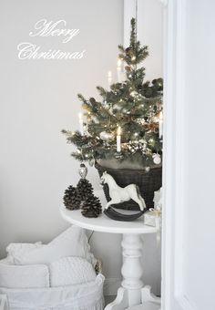 Dreams Come True: Merry Christmas