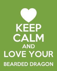 Keep calm and love sibuna 💜 house of Anubis best show EVER even tho ive never seen it Bearded Dragon Habitat, Bearded Dragon Cage, Bearded Dragon Funny, Keep Calm And Love, Love You, My Love, House Of Anubis, Keep Calm Quotes, Mother Of Dragons