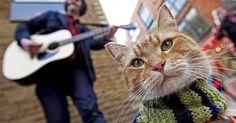La historia real de un músico callejero de Londres, que vive acompañado de su gato Bob, salta de los libros a las pantallas.