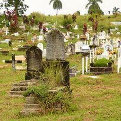 Le cimetière de Mount Hope au Panama