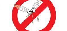 Ενώ τα απωθητικά κουνουπιών φαίνεται να είναι η προφανής λύση για να προστατευτούμε από τσιμπήματα κουνουπιών το καλοκαίρι, κάποια σπρέι ...