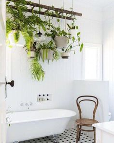 Stunning Indoor Plants Decor Ideas For Your Apartment check out these stunning indoor plant displays. Great inspiration for curating your indoor garden.check out these stunning indoor plant displays. Great inspiration for curating your indoor garden. Plantas Indoor, Hanging Ladder, Plant Ladder, Diy Hanging, Garden Design, House Design, Plant Design, Decoration Plante, Bathroom Plants