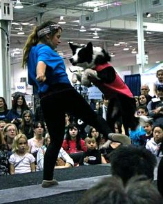 Fit Dogs at the All About Pets Show | Talent Hounds