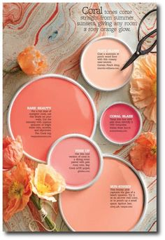 Better Home And Gardens Featured Paint Shades 2014 | Coral