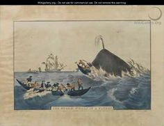 the best part of old timey whale pictures is how they depicted water expulsion from the blowhole. Not a puff of water, but a little stream like a dainty fountain.