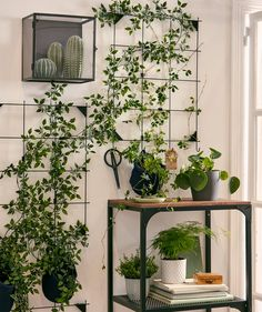 A wall garden formed using artificial plants attached to sections of wire memo board framed by other real and fake plants. A wall garden formed using artificial plants attached to sections of wire memo board framed by other real and fake plants. Decor, Wall Garden, Hanging Plants, Fake Plants Decor, Interior, Cool Plants, Ikea Plants, Indoor Plants, Fake Plants