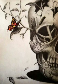Half Skull with catterpillar brow and butterfly