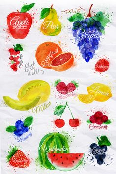 Fruit Watercolor by Anna on @creativemarket