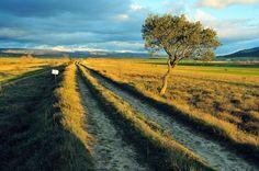 Vía romana de Flaviobriga (Castro Urdiales) a Vxama Barca (Osma de Álava). El terraplén de la vía romana en el Camino de la Calzada, en el lugar de Socalzada de Castresana.