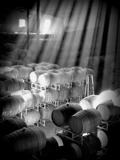 Barrel Room Photograph - Food and Wine