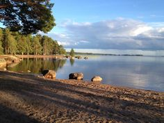 Lake nearby Hedesunda