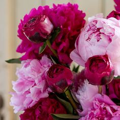 Fresh Peony Bunch in for mom Mother's Day Flowers + Blooming at Terrain Flowers For Mom, Love Flowers, Beautiful Flowers, Flower Power, My Flower, Plant Fungus, Growing Gardens, Different Shades Of Pink, Pink Peonies