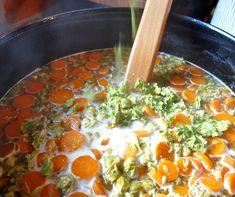 Gemüsesuppe? Nein, Würze mit Frischhopfen und Möhren