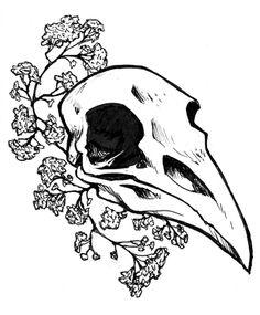 tumblr drawings raven skull - Google Search
