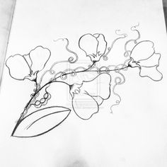 sweet pea flower drawing - Google Search