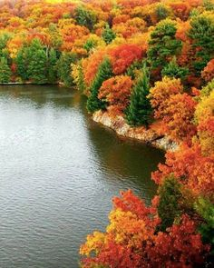 10 visit-worthy places where the leaves actually change color