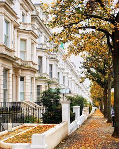 photos of London ever taken,Autumn in Holland Park London,Beautiful autumn in Londonpictures of london landmarks Notting Hill, London Dreams, London Lifestyle, Holland Park, London Landmarks, Park Photography, London Photos, London City, London House