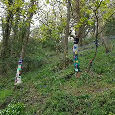 Knitting graffiti in South Devon.