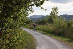 la pista ciclabile. The bike path