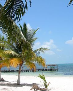 Jamaica has beautiful beaches - a trip to Jamaica is sure to be a great time - click for tips.