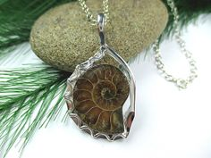 Sterling Ammonite Necklace Fossil Pendant Sterling by SimpleGem, $45.00