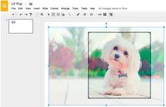 O Google anunciou hoje que o Google Apresentação ganhou novos recursos de edição de imagem para slides e desenhos que permite executar tarefas básicas de edição, sem ter que sair do aplicativo. Isso significa que agora você pode cortar, aplicar máscaras de formas e bordas em imagens.