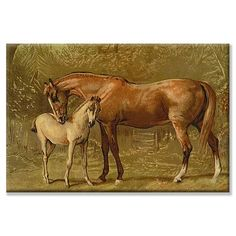Samuel Sidney 'Thoroughbred Mare and Foal' Art