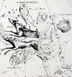 Hevelius - 1687 - Uranographia - Bootes and Canes Venatici